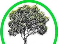 Ekologicznie i nowocześnie